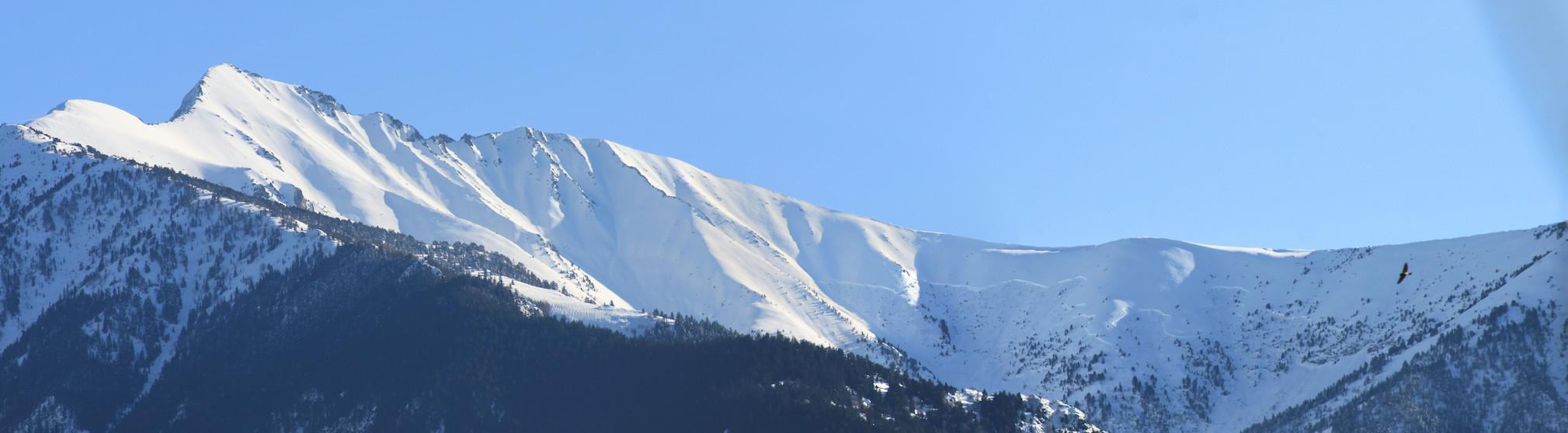 Avalanche sur le massif du Canigó / O. DECOMBAS