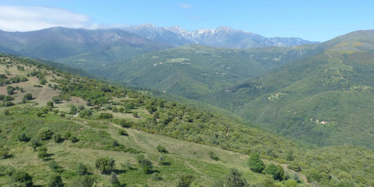 Vue du piémont du massif, montagne Santa Anna / SMCGS