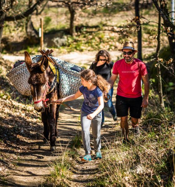 Avec un âne catalan pour porter les sacs, la rando est plus ludique ! / JC MILHET